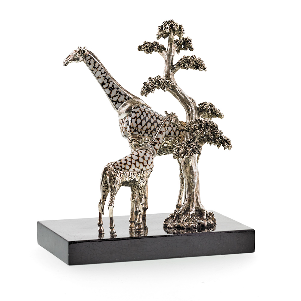 Giraffes with Marble Cone Shell