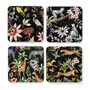 Jungle Wildlife Square Coasters, Set of 4