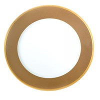 Haviland & Parlon Arc en Ciel, Chestnut Dinner Plate