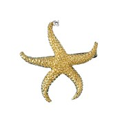 18k Yellow Gold Starfish Pin