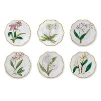 Histoiries D'Orchidees Set of 6 Dinner Plates