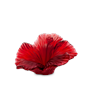 Daum Crystal Hibiscus Decorative Flower