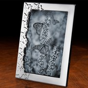 Butterfly Sterling Silver Frame