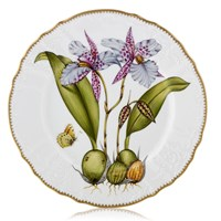 Anna Weatherly Orchid Dinner Plate #2