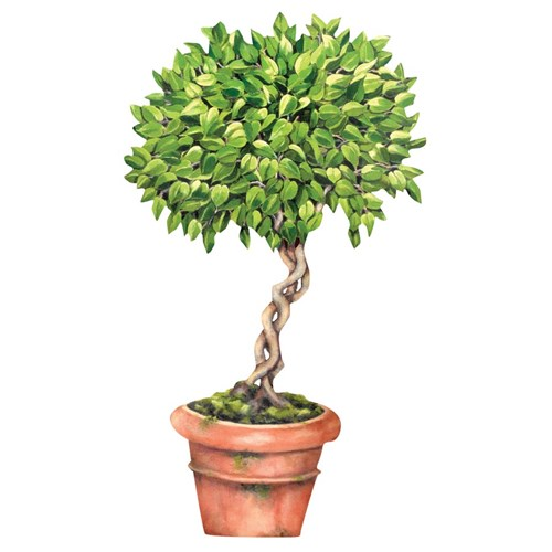 Trompe l'Oeil Decorative Wooden Ficus