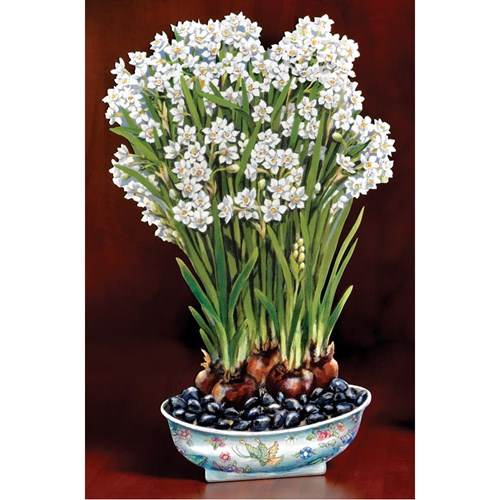 Trompe l'Oeil Decorative Wooden Paperwhites