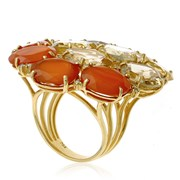 18k Gold Special Cut Yellow with White Citrine & Carnelian Ring
