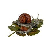 Austrian Bronze Snail Mother and Baby