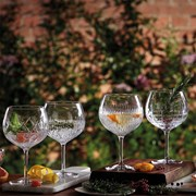 Waterford Gin Journeys Collection, Balloon Glasses