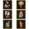 Exotic Flowers Mats & Coasters
