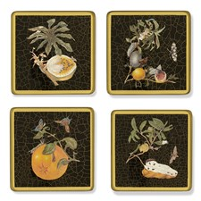 Insects & Fruits Black Square Coasters