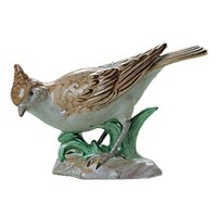 Dresden Porcelain Greenfinch