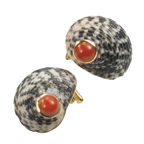 Black & White Shell & Coral Earrings