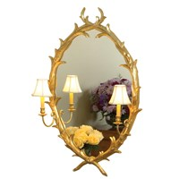 Lily Bud Oval Mirror with Lights