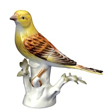 Yellowhammer Bird Facing Left