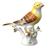 Yellowhammer Bird Looking Right