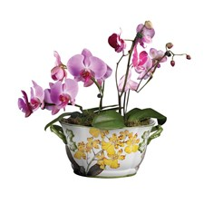Large Oval Orchid Ceramic Planter