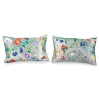 Agasse Pillows
