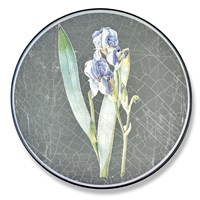 Silver Round Iris Placemats