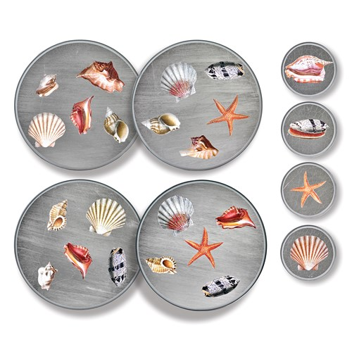 Shell Placemats and Coasters